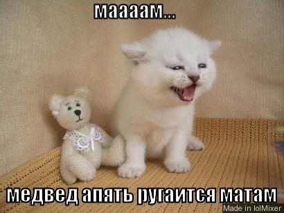 маааам... медвед апять ругаится матам