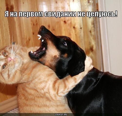 я не целуюсь!