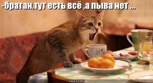 www.vkontakte.ru/id21848485.  Вес кармы.  Найти ещё сообщения от Alina.