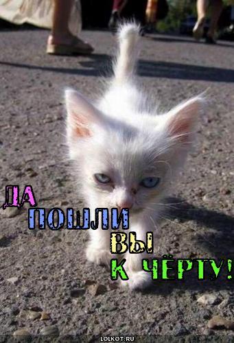 0 вы: