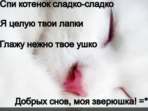Сонник вы целуете