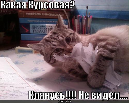Купить дипломную и курсовую работу в СПб