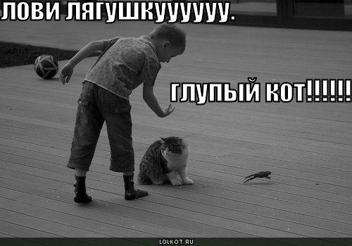 лови лягушку!