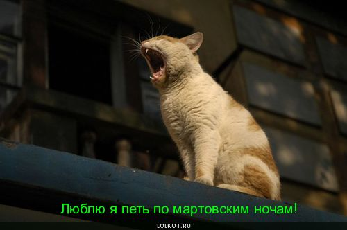 люблю петь