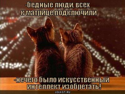 matritsa_1276167264.jpg