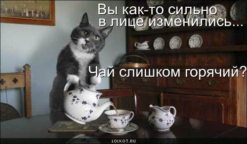 chay-goryachiy_1278383157.jpg