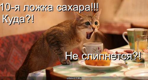 lozhka-sahara_1278500899.jpg