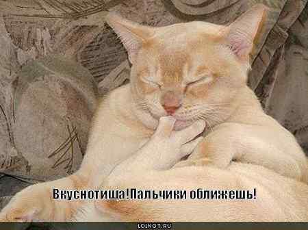 http://lolkot.ru/wp-content/uploads/2010/07/palchiki-oblizhesh_1278515472.jpg