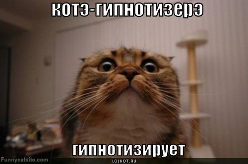 gipnoz_1282305394.jpg