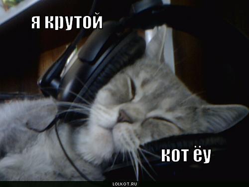 krutoy-kot_1282906975.jpg