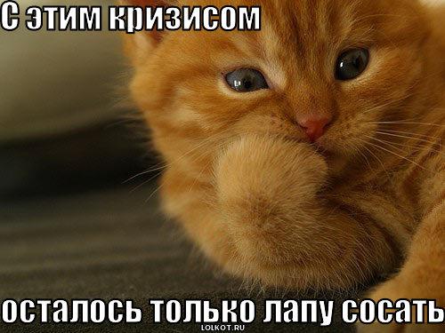 lapu-sosat_1282412876.jpg