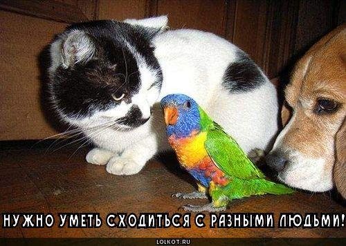 raznyye-lyudi_1281440859.jpg