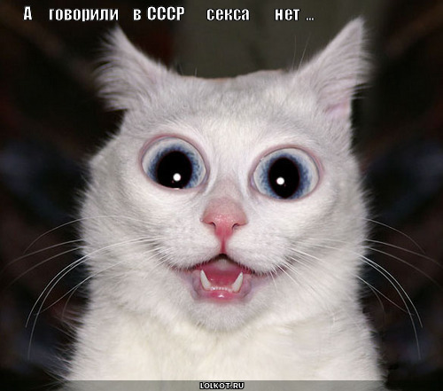 ПежняНет АНЕКДОТЫ  pejnyanet
