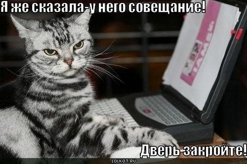 soveschaniye_1282539114.jpg