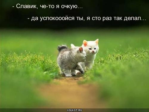 http://lolkot.ru/wp-content/uploads/2010/08/sto-raz-tak-delal_1282219976.jpg