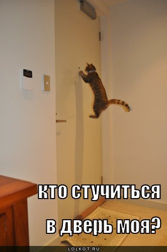 kto-stuchitsya_1287882791.jpg