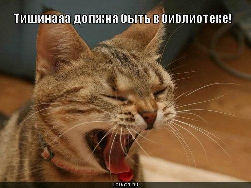 tishina-v-biblioteke_1286996855.jpg