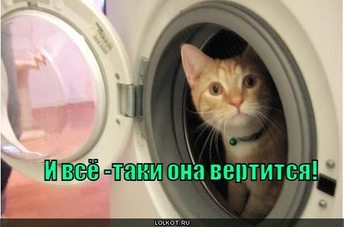 http://lolkot.ru/wp-content/uploads/2010/11/ona-vertitsya_1289362384.jpg