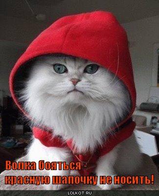 Красная шапочка и красная букашка.