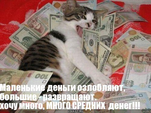 важности прикольные картинки хочу много денег факторами