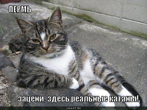 perm_1291314632.jpg