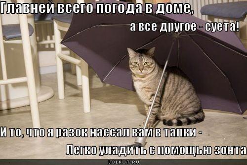 Хорошая погода в москве фото