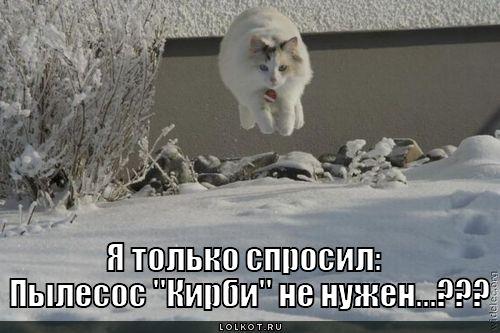 http://lolkot.ru/wp-content/uploads/2011/02/pylesos-kirbi_1297867825.jpg