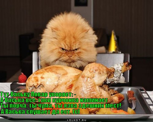 http://cdn01.ru/files/users/images/dd/db/dddb48bc2c7610a9b0006c6368c2d631.jpg