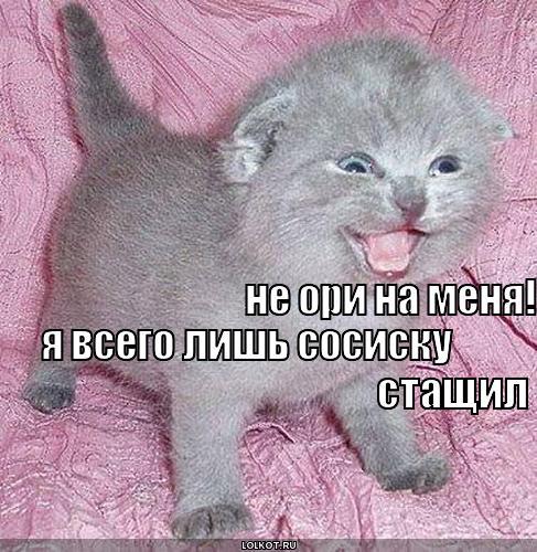 ne-ori-na-menya_1301150875.jpg