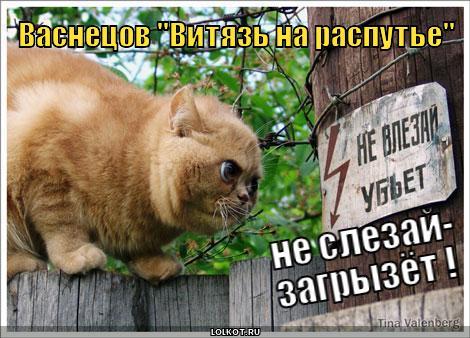 http://lolkot.ru/wp-content/uploads/2011/03/vityaz-na-raspute_1299821822.jpg