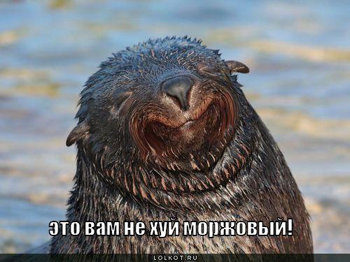 Руна Одал  Славянская Ярмарка Усмарь