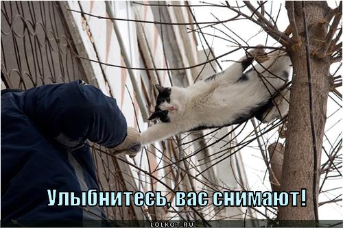 vas-snimayut_1301677487.jpg