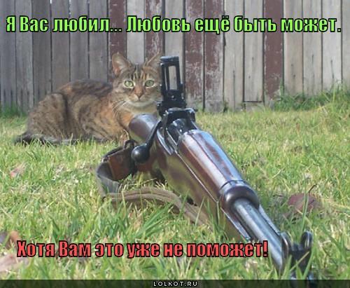 http://lolkot.ru/wp-content/uploads/2011/04/ya-vas-lyubil_1303155686.jpg