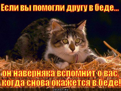 drug-v-bede_1307223714.jpg