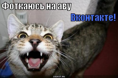 Фоткаюсь на аву вконтакте
