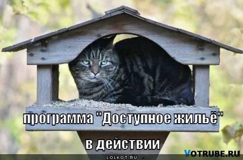"""программа """"Доступное жильё"""" в действии"""