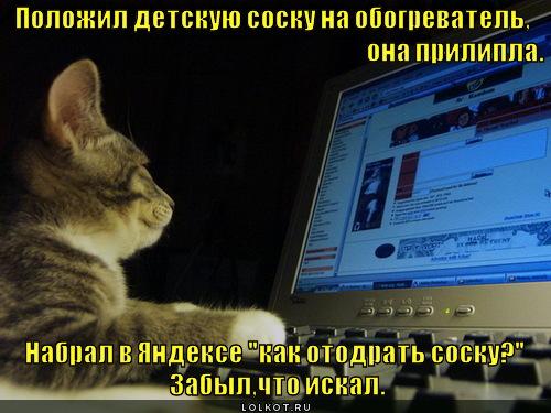 http://lolkot.ru/wp-content/uploads/2011/11/kak-otodrat-sosku_1322334450.jpg