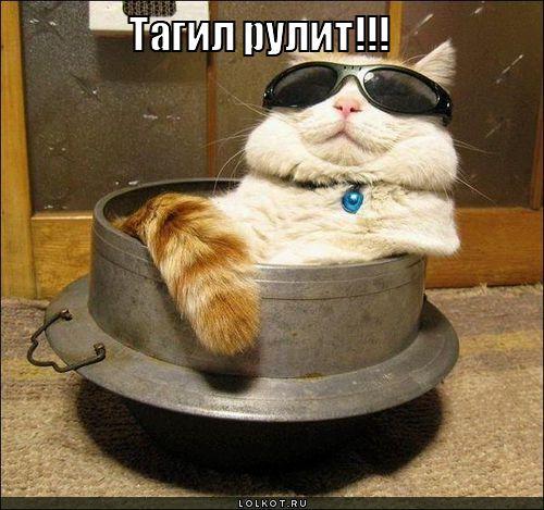 ру рулит: