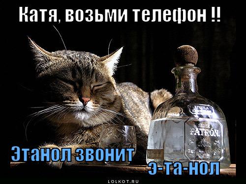 Катя, возьми телефон !! Этанол звонит  э-та-нол