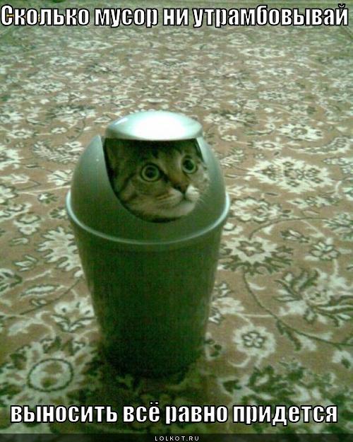 http://lolkot.ru/wp-content/uploads/2011/12/vynosit-vsyo-pridetsya_1323319898.jpg