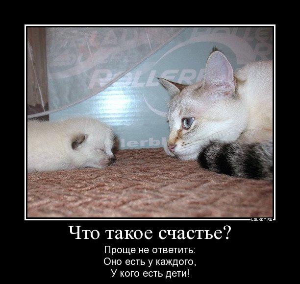 chto-takoye-schaste_1326520464.jpg