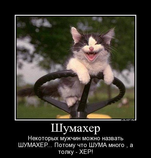 shumaher_1326220313.jpg