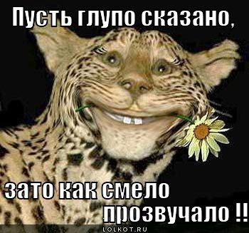 smelo-prozvuchalo_1326257147.jpg