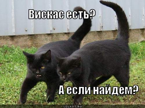 viskas-yest_1325915372.jpg