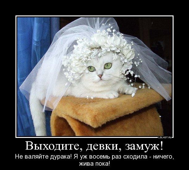 Приколы замуж картинки, мая анимированная открытка