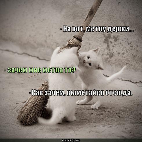 vymetaysya-otsyuda_1326688119.jpg
