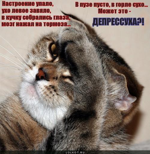 depressuha_1330231393.jpg