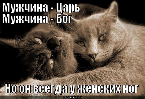 u-zhenskih-nog_1332993667.jpg