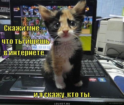 chto-ty-ischesh_1335360065.jpg