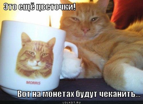 eto-yeschyo-tsvetochki_1334550084.jpg